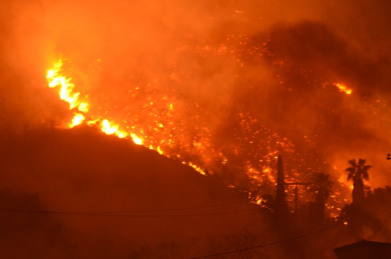 Fires in L.A.
